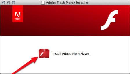 reinstall adobe flash player